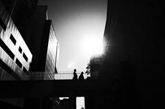 Darling Drive (bigboysdad) Tags: street blackandwhite bw monochrome 28mm monotone gr ricoh