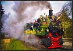 WALPURGIS 2016 (NPPhotographie) Tags: mist art nature fog train creative dust oberberg npp dampflokomotive hexe walpurgis dampf