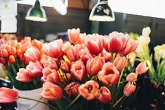 Seattle Flower Market (Nathan Pardee Photography) Tags: seattle travel canon photo photography flower market pikeplace sea pnw