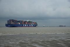 CMA CGM Alaska (DST_9474) (larry_antwerp) Tags: port ship belgium belgi vessel container antwerp schelde  antwerpen tanker  schip      cmacgm                     cmacgmalaska 9469572   aplraffles 9631979