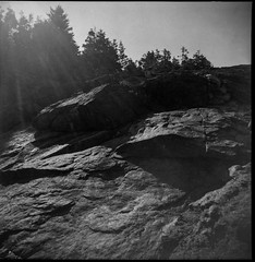 looking up, into the sun, Little White Head, into the sun, late light, Monhegan, Maine, Argus Super Sseventy Five, Fomapan 200, Ilford Ilfosol 3 Developer, mid May 2016 (steve aimone) Tags: cliff 120 film monochrome mediumformat rocks maine lookingup monhegan intothesun monheganisland fomapan200 argussuperseventyfive epsonperfectionv500 littlewhitehead