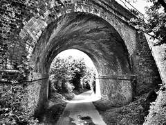The Railway Bridge (AndyBailey) Tags: bridge bw arch walk surrey brickwork albury 2016