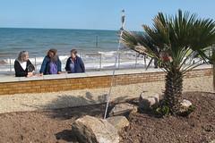 IMG_1946site3 (janohighway) Tags: summer sculpture art design seaside community selection environment choice recycling collective debate teignmouth outdoorart ecoart sculpturetrail devonuk womenartists trail2016