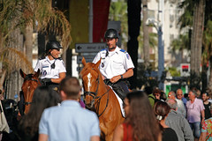 ambiance croisette (Steph Blin) Tags: horses france smile cheval cannes police ctedazur promenade 06 animaux sourire ville attraction crowded chevaux croisette scurit