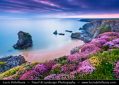 UK - England - Cornwall - Carnewas & Bedruthan Steps with Sea Pink or Purple Sea Thrift Flower during stormy sunset ( Lucie Debelkova / www.luciedebelkova.com) Tags: ocean uk greatbritain travel light sunset sea england panorama seascape motion blur west english beach nature water beautiful beauty rock horizontal rural landscape outdoors island bay coast seaside europe cornwall surf european view britishisles natural unitedkingdom britain dusk horizon great over scenic eu nobody scene erosion formation coastal western gb vista coastline british exploration landschaft idyllic isles tranquil scenics seacoast evropa magiclight carnewasbedruthansteps anglie luciedebelkova wwwluciedebelkovacom