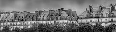 Les toits de Paris | Paris roofs ([Nica F.]) Tags: roof paris architecture btiment monochrome blackandwhite noiretblanc toits france toitsdeparis