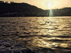 Day ends in a fake paradise .. (noargument) Tags: sunset sea sky istanbul bosphorus