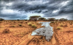 Finally The rain has come! (Ali:18 ( )) Tags: cloud nature rain landscape desert sabia ksa jazan      jizan