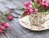 blossoms & chintz (s@ssyl@ssy) Tags: tea chintz antique vintage stilllife china barndoor barnboard wood