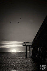 Dawn scene