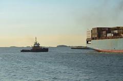 Justice (jelpics) Tags: cargoship conleyterminal containership sealandwashington merchantship tug tugboats justice boat boston bostonharbor bostonma harbor massachusetts ocean port sea ship vessel
