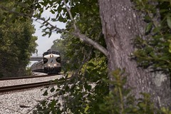 F9-Eyyy! (Colin Dell) Tags: railroad tree train ns railway presidential southern locomotive streamlined sou railfan ocs f9 gsf streamliner norfolksouthern f9a officecarspecial officecartrain