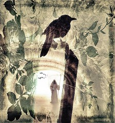 we wake up in the future (CatnessGrace) Tags: flowers brown green bird art texture birds mystery photomanipulation digitalart dramatic tunnel mysterious tunnels texturedart mysterioustunnels mysterytunnels