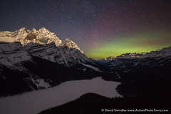 Peyto Lake Aurora (David Swindler (ActionPhotoTours.com)) Tags: canada night stars nightscape alberta aurora banff auroraborealis peytolake canadianrockies