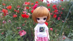 Gozoki and the Poppies (-nickless-) Tags: outdoors doll little dal mueca rotchan minidal gozoki obitsu11cm