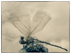 Whimsical Dragonfly (tisatruett) Tags: sky flower clouds fun wire whimsy sculture recycle whimsical
