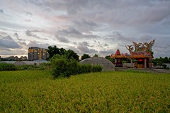 2016-07-07 18.58.50 (pang yu liu) Tags: temple 2016 07 jul   pate  typhoon  dusk farm