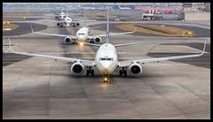 Jet Airways B737-800 VT-JLE Mumbai (VABB/BOM) (Aiel) Tags: jetairways boeing b737 b737800 vtjle mumbai canon60d tamron70300vc