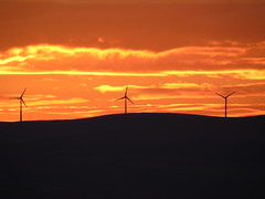 Wind turbines at sunset (stuartcroy) Tags: orkney island sunset light landscape colour orange wind turbine