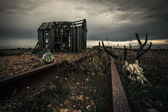 who want's to live forever...... (stocks photography.) Tags: photographer dungeness whowantstoliveforever michaelmarsh