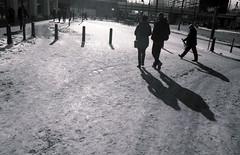 snow and shadows [analog] (__J) Tags: schnee shadow blackandwhite bw sun snow berlin slr film analog canon kodak iso400 pedestrian scan alexanderplatz sw canonae1 kodakbw400cn sonne schatten canonfd spiegelreflex schwarzweis 2013 tiefesonne karlliebknechtstrase fusgnger
