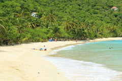 BVI 2013/ Smugglers Cove (Sweetlassie) Tags: beach palmtrees caribbean tortola smugglerscove bvi2013