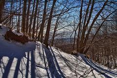 Passeggiando sull'Etna / Walking on Etna (Simone Di Dio) Tags: snow italia neve sicily sentiero etna sicilia vulcano passeggiata passeggiando mygearandme rememberthatmomentlevel1 vigilantphotographersunite