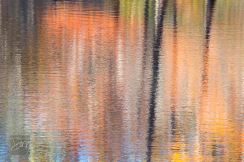 Abstract_Reflection_1.jpg