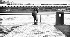 Hong Kong Love (ROSS HONG KONG) Tags: park leica boy bw white black love girl monochrome skyline hongkong bay harbor lovers monochrom