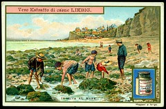 Liebig S999 On the Seashore #1 (cigcardpix) Tags: beach vintage advertising seaside ephemera liebig chromo tradecards