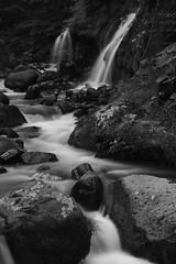 Mountain stream and waterfall  (SIGMA DP3 Merrill) (potopoto53age) Tags: blackandwhite bw macro apple monochrome japan river 50mm blackwhite waterfall aperture dale sigma 日本 f28 yamanashi merrill mountainstream ndfilter appleaperture dp3 oizumi sigmalens 山梨県 吐竜の滝 potopoto53age sigmaphotopro 大泉町 dp3m dp3merrill sigmadp3merrill sigmalens50mmf28macro sigmaphotopro551 mountainstreamandwaterfall waterfalloftoryu nikonnd400x