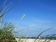 29|52 - Natur (Le fabuleux destin d'Amlie Poulain) Tags: strand natur ostsee fkk mecklenburgvorpommern 2013 kw29 woche29 fkkstrand 52wochen|2013 wochenstart157 khlugsborn