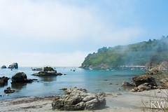 Sounds of the Harbor (sleepnever) Tags: ocean california seaweed tree beach nature water fog landscape boats outdoors harbor sand rocks waves cliffs trinidad coastline 2470l buoy robertwatts trinidadbeach