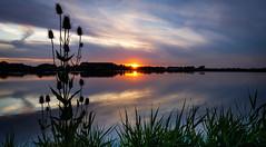 Sunset (Arie van Tilborg) Tags: sunset zonsondergang vlaardingen krabbeplas