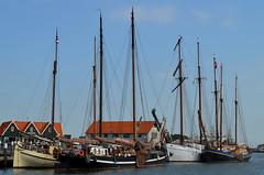 Haven van Oudeschild (2013) (l-vandervegt) Tags: haven holland netherlands boot ship harbour nederland texel niederlande oudeschild 2013