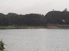 North-East view of lake (ramkeeblr) Tags: lake bangalore ramkumar ulsoor ramkeeblr