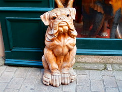 chiens de guerande (jeanpierrerene49) Tags: xxxxxxxx