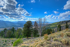 Idaho (Daniel J. Mueller) Tags: trees usa mountains clouds landscape bush wolken idaho berge valley landschaft bume hdr tal bsche d800e