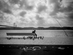 OMD22273 (Nelson de Oliveira) Tags: street bridge blackandwhite bw man rio river fishing alone seat streetphotography banco ponte human pidgeons bodie tejo pesca tagus pombos
