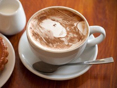 cappuccino anyone? (Manhattan Girl) Tags: coffee photofuniacom shellykayphotography