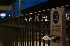 IMG_6348 (verita82) Tags: street train milano smoke streetphotography trainstation lambrate smokingarea