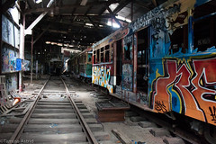 Down the Line (Tamina Astrid) Tags: abandoned graffiti decay traintracks australia urbanexploration newsouthwales sutherland urbex tramsheds taminaastrid {vision}:{car}=0644 {vision}:{outdoor}=0855 {vision}:{street}=0513 loftustramsheds