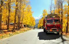 On the road to Keylong (mala singh) Tags: road autumn india leh manali himalayas himachalpradesh