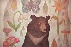Asian black bear - detail (VLADIMIR... . . .) Tags: bear illustration panda polarbear giantpanda brownbear grizzlybear bearbear slothbear ursidae spectacledbear sunbear asiaticblackbear inhonorofspring
