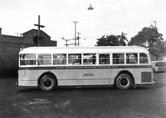 Los Angeles Motor Coach Bus no.3802 (Metro Transportation Library and Archive) Tags: history losangeles publictransportation transportation lamc losangelesmotorcoach busexterior losangelesmotorcoachlines