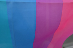 Flag /  (marumeganechan) Tags: color japan flag  fujifilm  x100  x100t