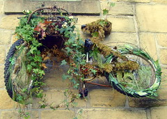 Overgrown Bicycle (Tony Worrall Foto) Tags: county uk flowers england plant france nature overgrown bike bicycle wall happy town nice stream tour open place ride image yorkshire country north visit location area northern update grown attraction hebdenbridge yorks welovethenorth 2015tonyworrall