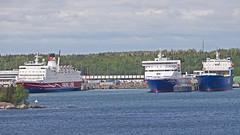 Rosella, Liverpool Seaways and Regal Star in Kapellskr (Franz Airiman) Tags: ferry harbour rosella dfds tallink vikingline dfdsseaways kapellskr liverpoolseaways regalstar