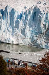 Tourist busses arriving (ckocur) Tags: patagonia ice southamerica argentina nationalpark glacier peritomoreno elcalafate icefield southernpatagonia
