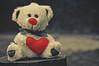 Teddy (Pztryk) Tags: red heart teddy outdoor matte miś zabawka